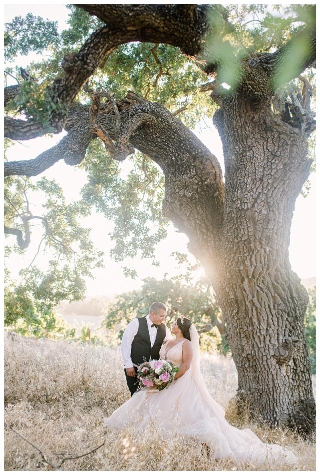 willow heights mansion wedding morgan hill_0550.jpg