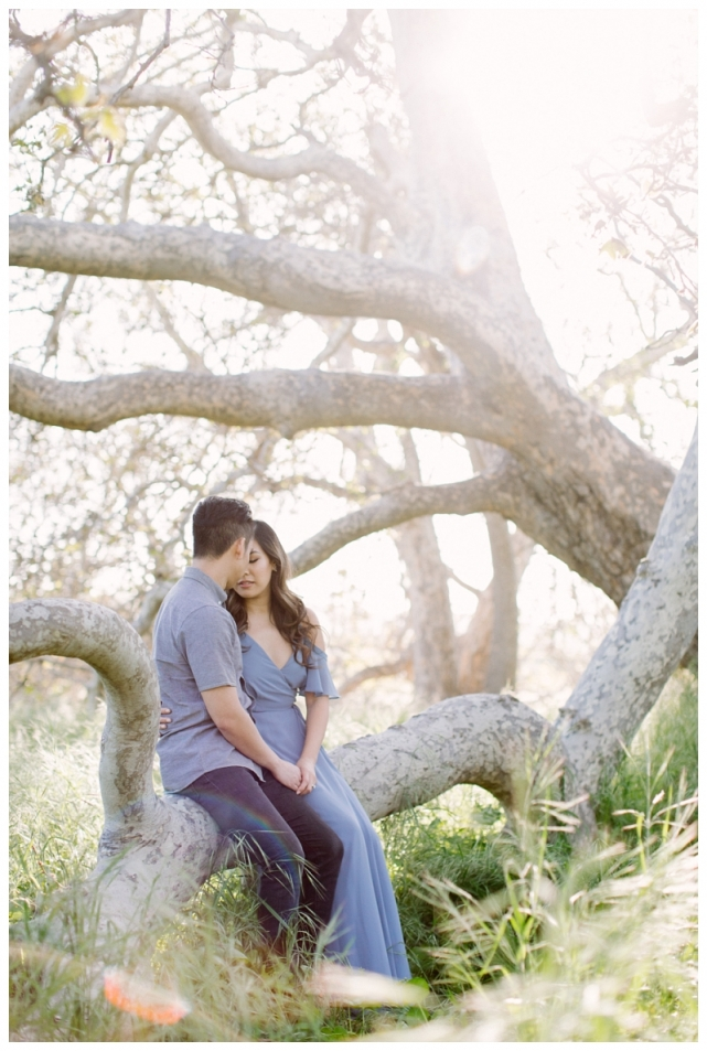 livermore engagement photography_0324.jpg